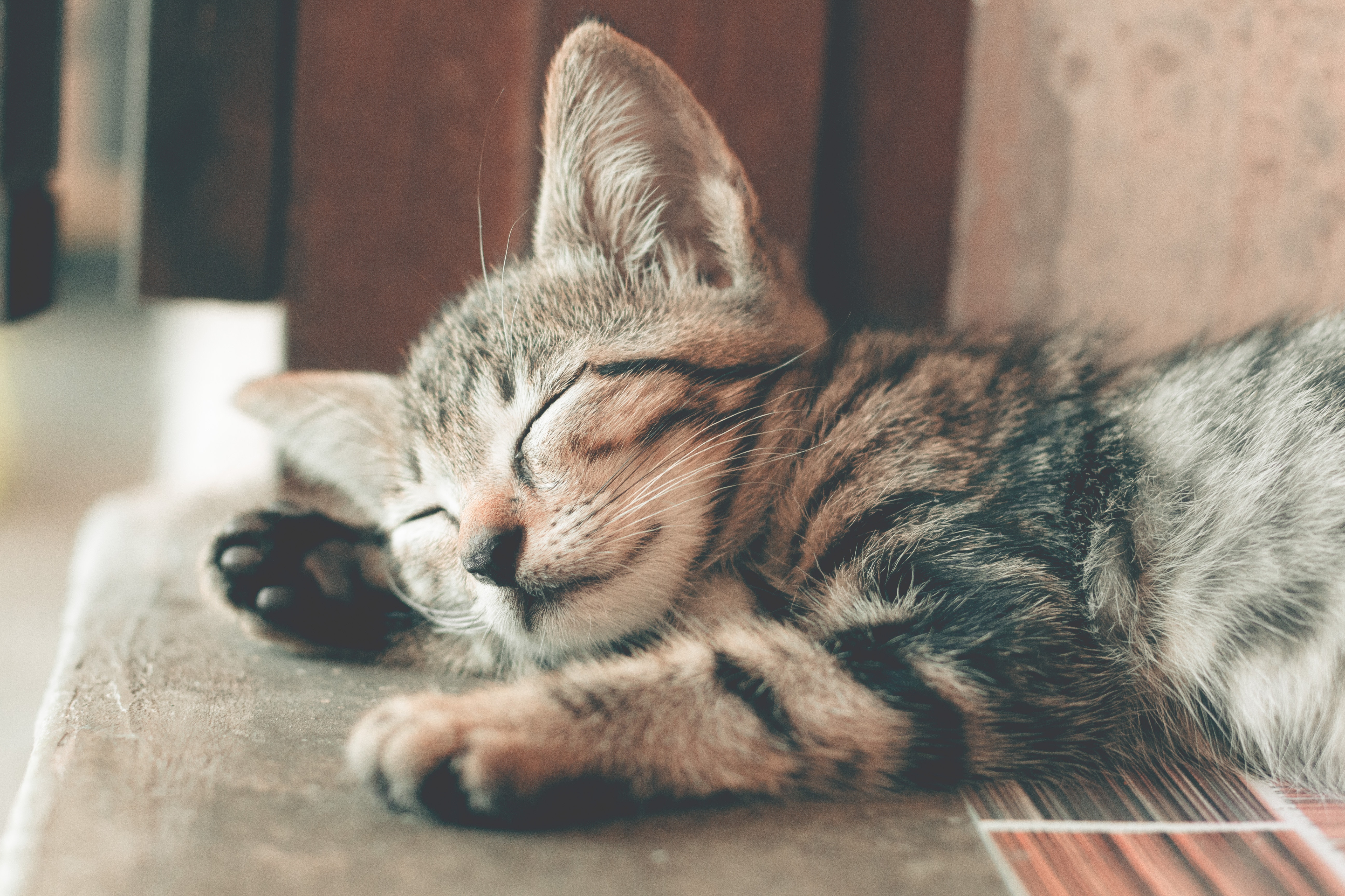 dormire gratis